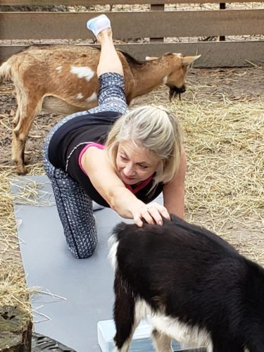 Goat Yoga Feb 2019 (109)