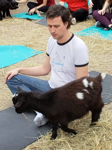 Goat Yoga Feb 2019 (73)